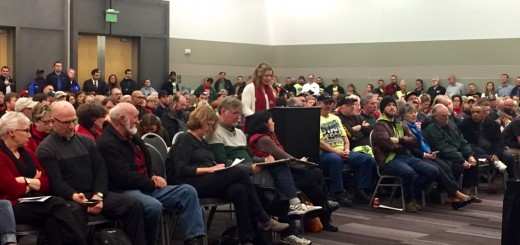 Ellen Moore at the January 18 public hearing in Tacoma