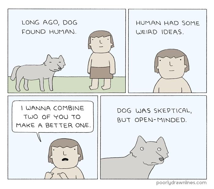 dog-human