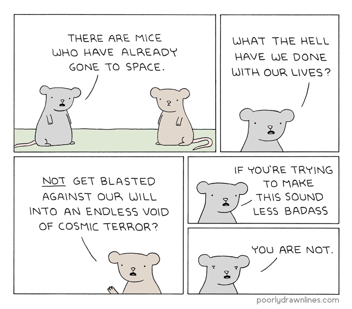 miceinspace